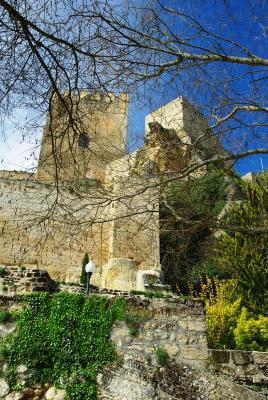 20160501083835-castillo-de-la-mota.jpg